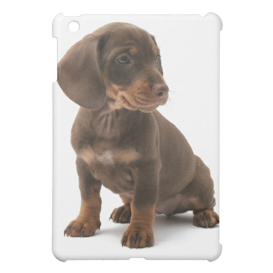 Daschund Puppy iPad Case