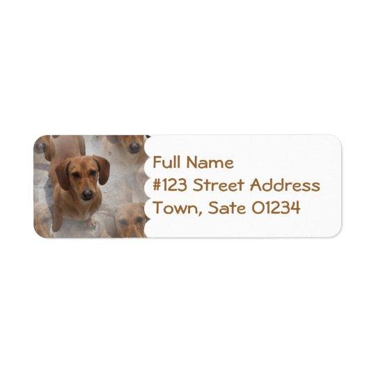Daschund Rescue Mailing Label Return Address Label