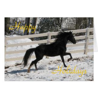 Dashing Stallion Note Card
