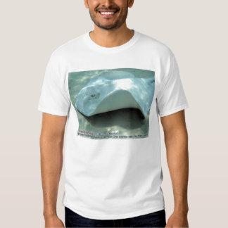 Dasyatis americana (Albino Southern Stingray) T-shirts