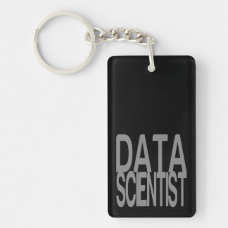 Data Scientist in Tall Silver Text Key Ring