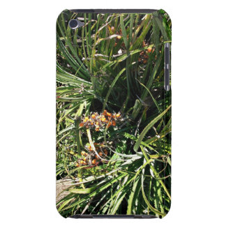 Dates in shrubs iPod touch cover