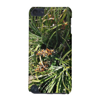 Dates in shrubs iPod touch (5th generation) cases