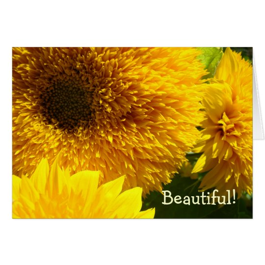 Daughters Cards Beautiful Woman Sunflowers