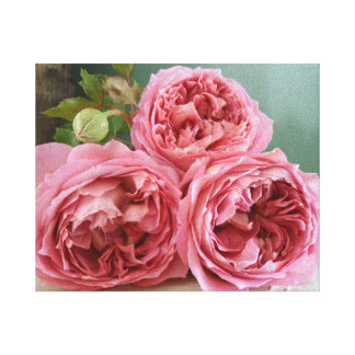 David Austin Heritage English Roses Print