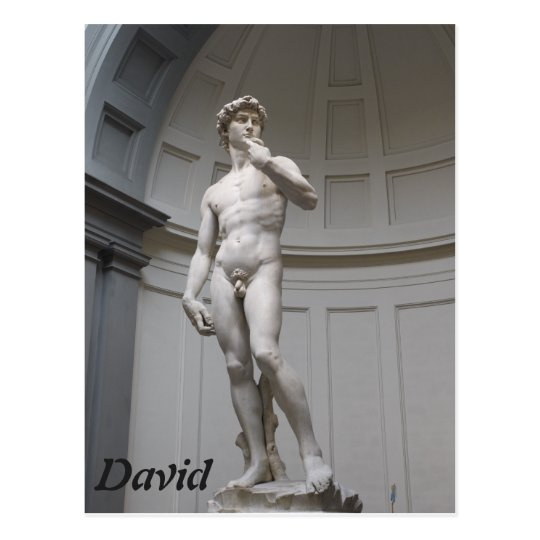 David by Michelangelo- Florence Postcard