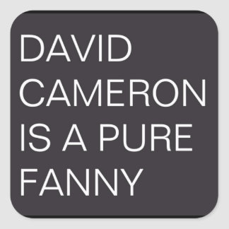 David Cameron Square Sticker