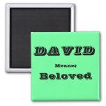 David Fridge Magnet