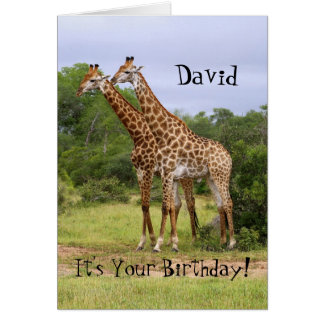 "David ""Go Wild"" Happy Birthday Giraffes Card"