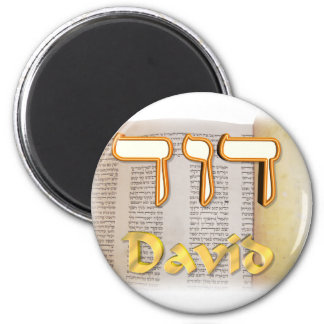David in Hebrew Magnets