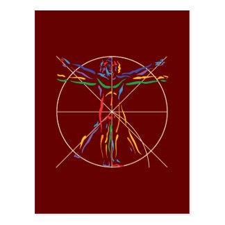 DaVinci Anatomy Man in Chakra Colors Postcard