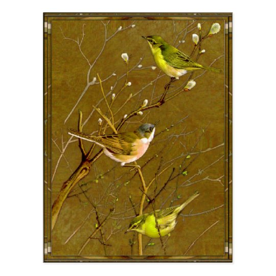 Dawn of Spring Postcard