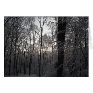 Dawning Light Card