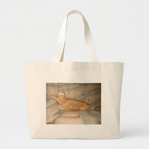 Dax Cat Napping Canvas Bags