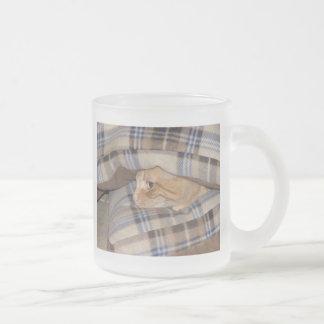 Dax Cat Pillow Sandwich Frosted Glass Mug