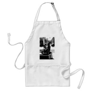 Day Dreaming Aprons