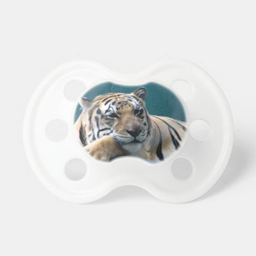 Day Dreaming Pacifiers