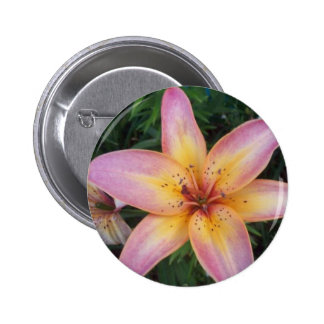 Day Lilly Button