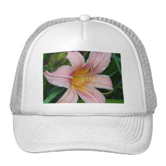 Day Lily Cap Catillac Cats Mesh Hats