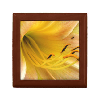 Day lily gift box