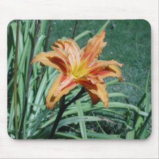 Day Lily Mouse Mat