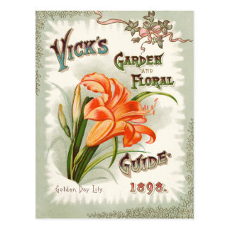 Day Lily Seed Packet Vintage Postcard