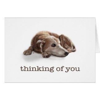 Daydreaming Dog Greeting Card