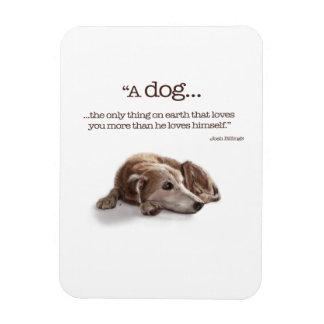Daydreaming Dog Rectangular Photo Magnet