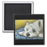 Daydreaming Westie Magnet