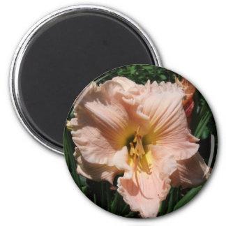 daylily 6 cm round magnet