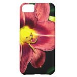 Daylily At Dusk iPhone 5C Cover