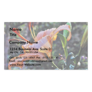 Daylily Daylilies Flowers Rain Pack Of Standard Business Cards
