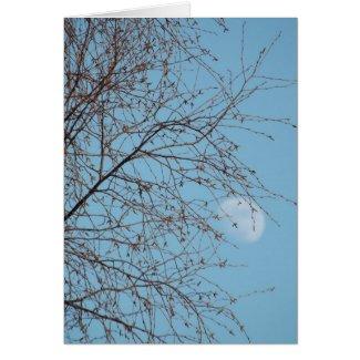 Daytime Gibbous Moon Greeting Card