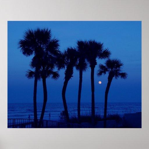 Daytona Beach FL Tropical Palm Tree Moon Poster