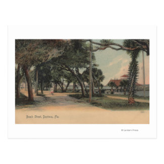 Daytona, Florida - View of Beach Street Post Card