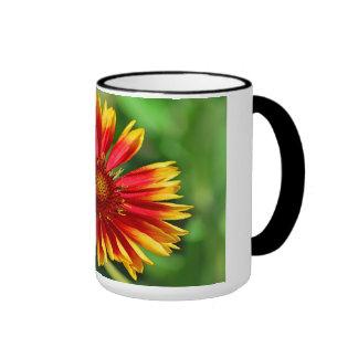 Dazzle Delight, Mugs