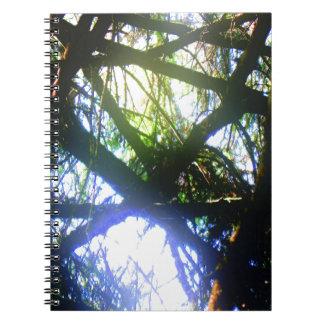 Dazzle Note Book