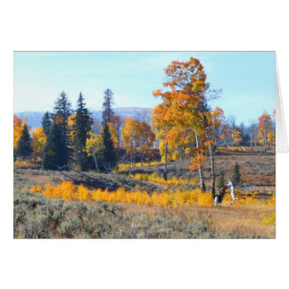 Dazzling Fall Colours Greeting Card