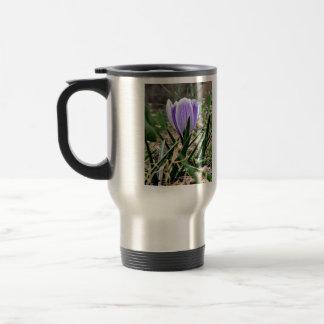 Dazzling Purple Crocus Flowers Coffee Mug