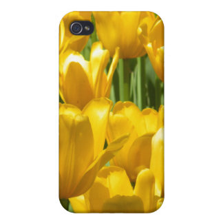 Dazzling Yellow Tulip Border iPhone 4 Case