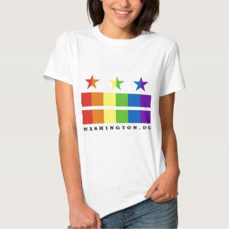 DC flag rainbow with text T-shirt