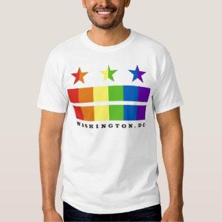 DC flag rainbow with text Tee Shirt