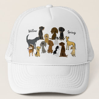 DC- Willow Springs Walking Buddies Hat