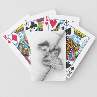 Dead Bird Card Deck