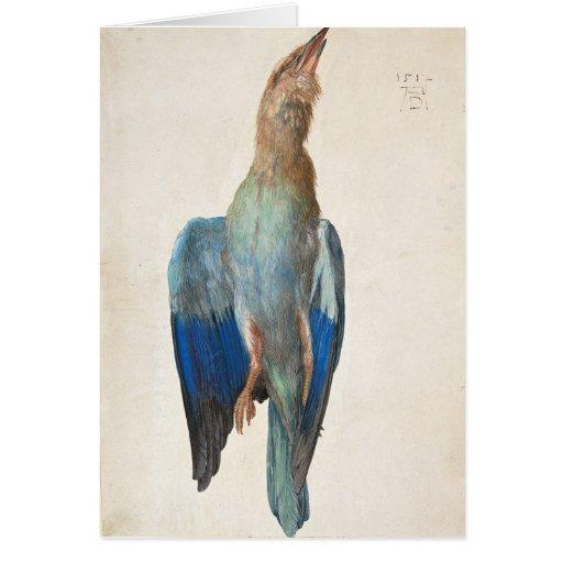Dead Blue Roller by Albrecht Durer Greeting Cards