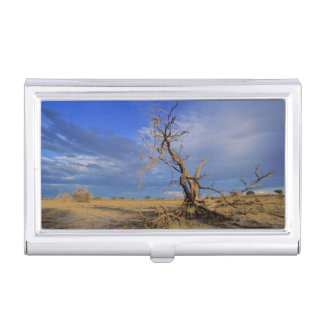 Dead Camel Thorn (Acacia Erioloba) Tree Business Card Holder