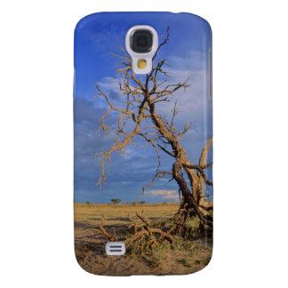 Dead Camel Thorn (Acacia Erioloba) Tree Galaxy S4 Case
