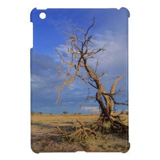 Dead Camel Thorn (Acacia Erioloba) Tree iPad Mini Cover