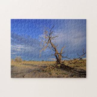 Dead Camel Thorn (Acacia Erioloba) Tree Jigsaw Puzzle
