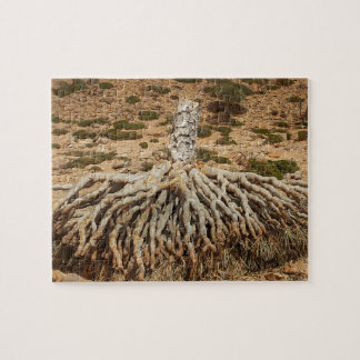 Dead dragon Blood Tree, Socotra, Yemen Jigsaw Puzzle